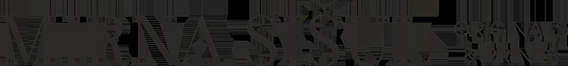 Mirna Sišul Art Logo
